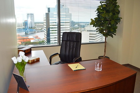 Executive Suite Professionals - Day Office