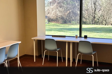 Suite-Space Private & Coworking Offices: Westchester NY - Dedicated Desk