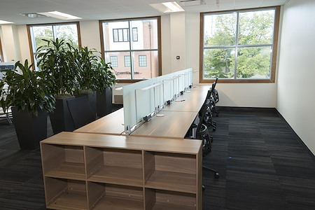 LifeWorking Coworking - LifeWorker Pro Desk