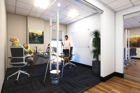 Capital Workspaces - Spring Valley - Office 10