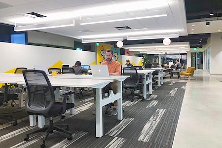 OnePiece Work Foster City - Dedicated Desk