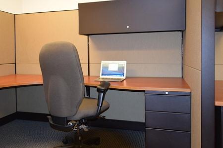 R.K. Black Office - Open Desk 4