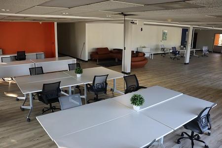 open space - Dedicated Desk 1