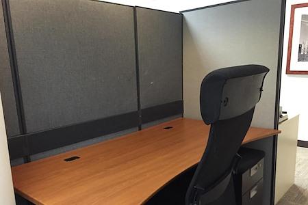 BPS - Open Desk 1