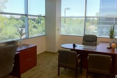Pleasanton Business Solutions - 4-5 person window office with view