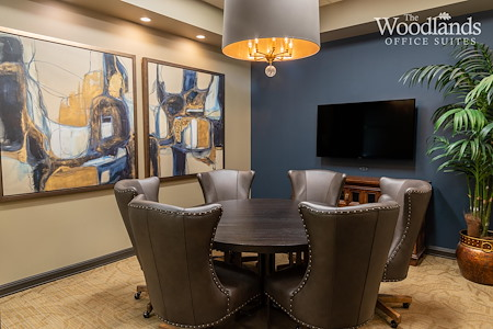 The Woodlands Office Suites - Conference Room