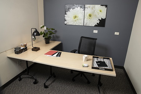 Satellite Center Santa Cruz - Private Office