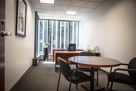 IDS Executive Suites - Premium View/Deluxe Window Office #33