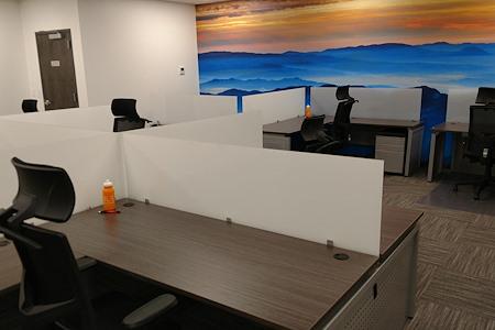 3LS WorkSpaces @ Conference Drive - Dedicated Desk 6