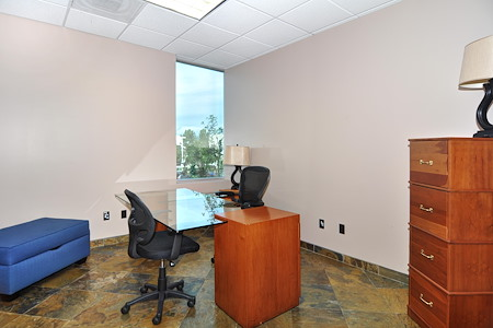 Irvine Spectrum Productivity Suites - Office Suite 203