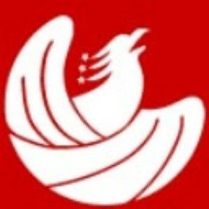 Logo of Auspicious Phoenix