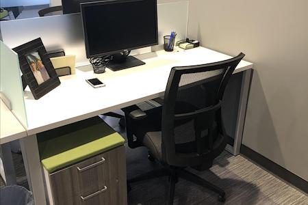 Intelligent Office-Westminster - Dedicated Desk