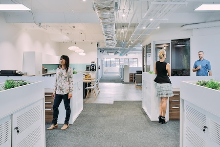 The Thrive Network - Dedicated Desk Space