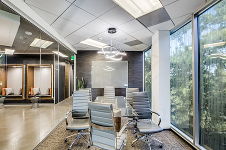 WORKSUITES-The Woodlands - Conference Room 6