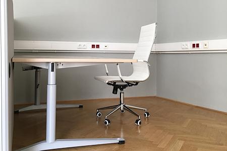 Kärntnerstrasse 17, 1010 Vienna - Dedicated Desk 1