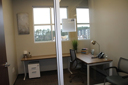 Office Evolution - Woodlands - Day Office (Lake View)