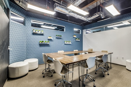 WORKSUITES-The Woodlands - Collaboration Room