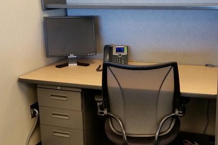Workstation Rental - Workstation 1