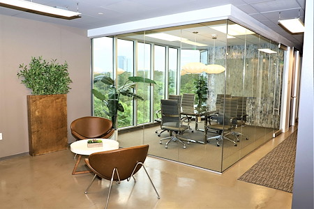WORKSUITES-The Woodlands - Conference Room 2