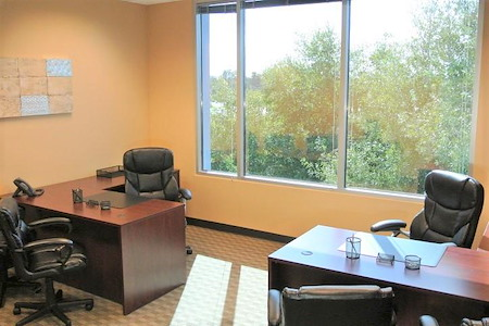 Orlando Office Center at Sand Lake Road - Office 309 - 2 to 3 Desk Window Office