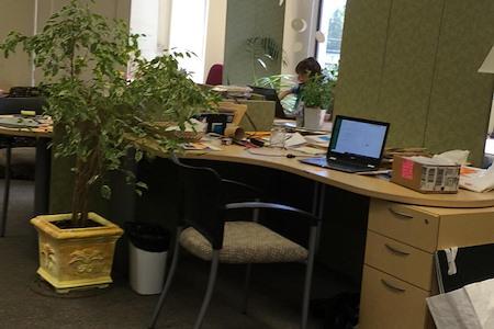 Burlingame Office Suite - Burlingame Shared Office Suite