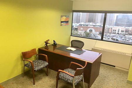 Tysons Office Suites - Day Office