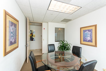 Alexa's Workspaces - Ft.Lauderdale - Meeting Room - Orchid