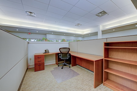 40West Coworking-Chestnut Hill - Suite 101 -10 Cubicle