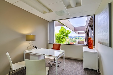 The Timbers - Barrister Executive Suites - Office 1