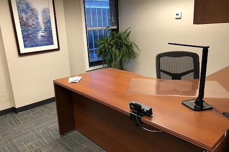 BusinessWise (Law & Finance Building) - Day Pass: Suite 300D-Private Office