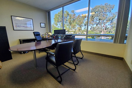 Professional private offices available in Aliso Viejo - Window Wall in Large Office