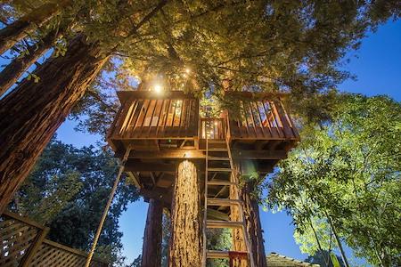 Redwood Haven Treehouse - Redwood Haven