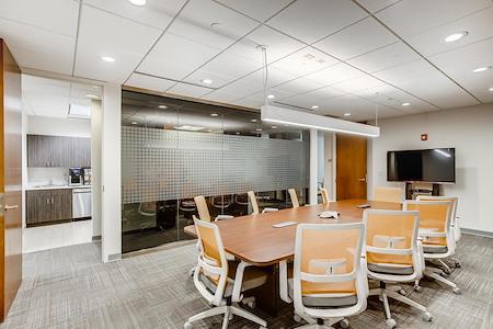 Office Evolution - Naperville - Large Conference room