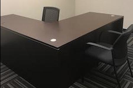 SoBro Biz Center - Team Office/ Executive Office