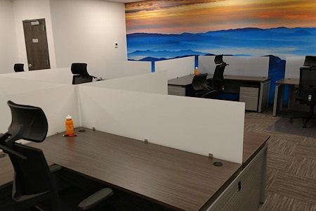 3LS WorkSpaces @ Conference Drive - Dedicated Desk 2