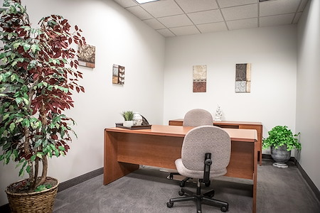 IDS Executive Suites - Deluxe Interior Office -  #955