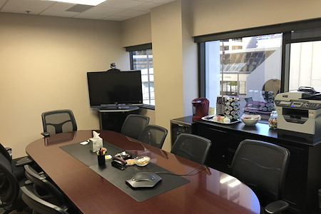 Tempest Reporting, Inc., Videoconferencing Services - Tempest Main Videoconference Room