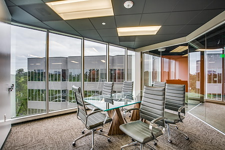 WORKSUITES-The Woodlands - Conference Room 1