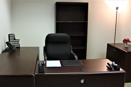 Source Office Suites Tysons Corner - Single Person Interior Coming Available!