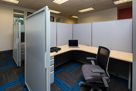 CEO Centers FLEX - Dedicated Desk Space | Premier FLEX PLAN