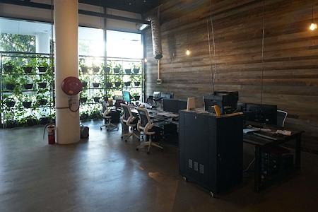 Involve Solutions - Dedicated Desk 1