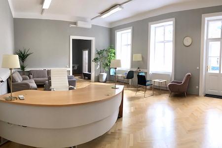 Kärntnerstrasse 17, 1010 Vienna - Open Desk 1