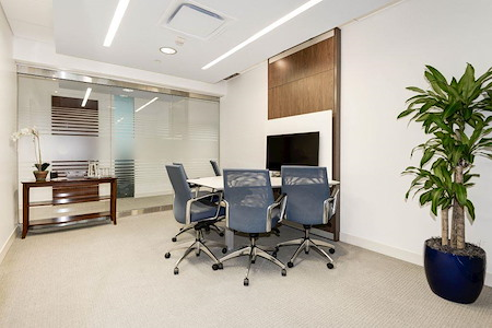 Carr Workplaces - Reston Town Center - Wiehle Meeting Room