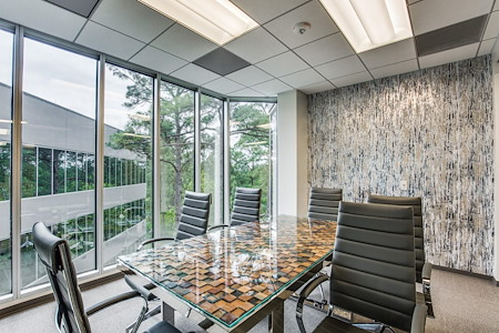 WORKSUITES-The Woodlands - Conference Room 4