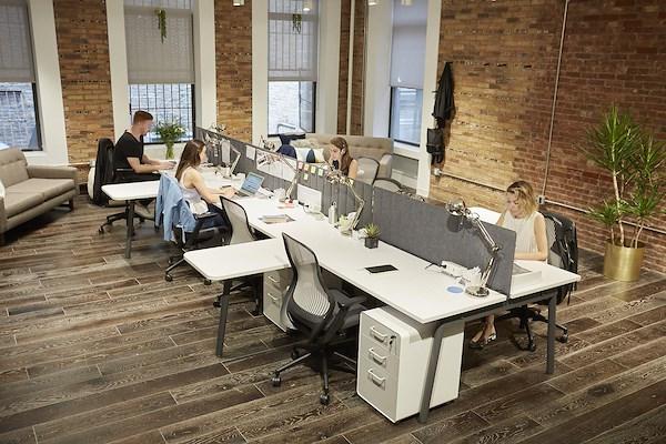 The Yard: Flatiron North - Large Bullpen Flex Space: Max 20-desks