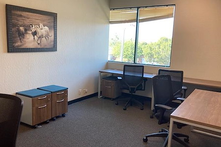 Silicon Valley Business Center - 205-6 Office for 4