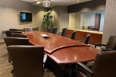 Plaza Executive Suites - Large Conference Room