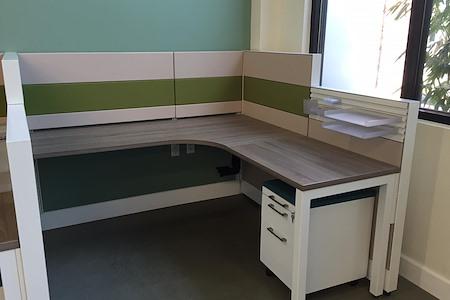 Alfi Trade Inc. - Well-lit open work space (desk 10) hour