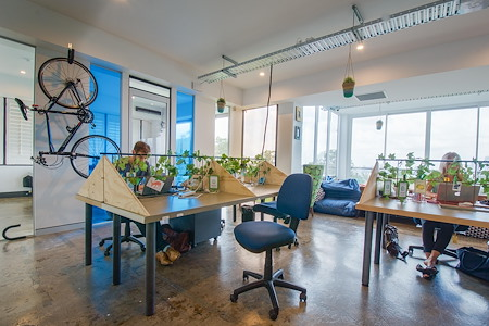 WOTSO Workspace Neutral Bay - Permeant Desk