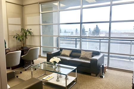 Spacious Private Executive Office with gorgeous view - Executive office with a view